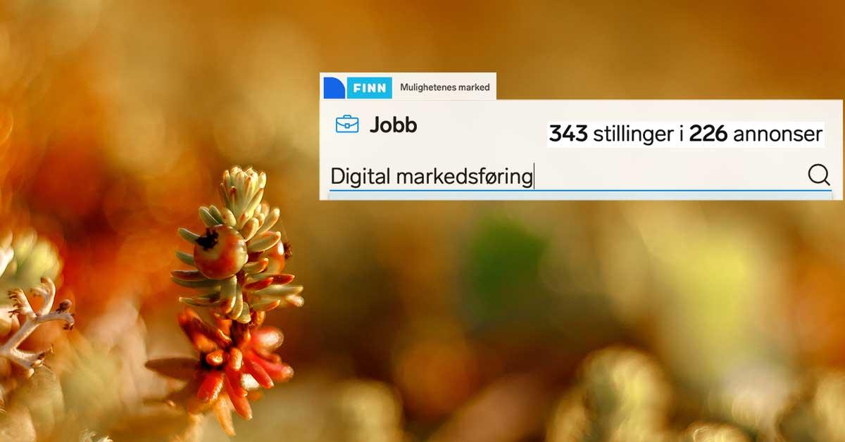 343 ledige stillinger innen digital markedsføring på finn.no den 3.12.2020